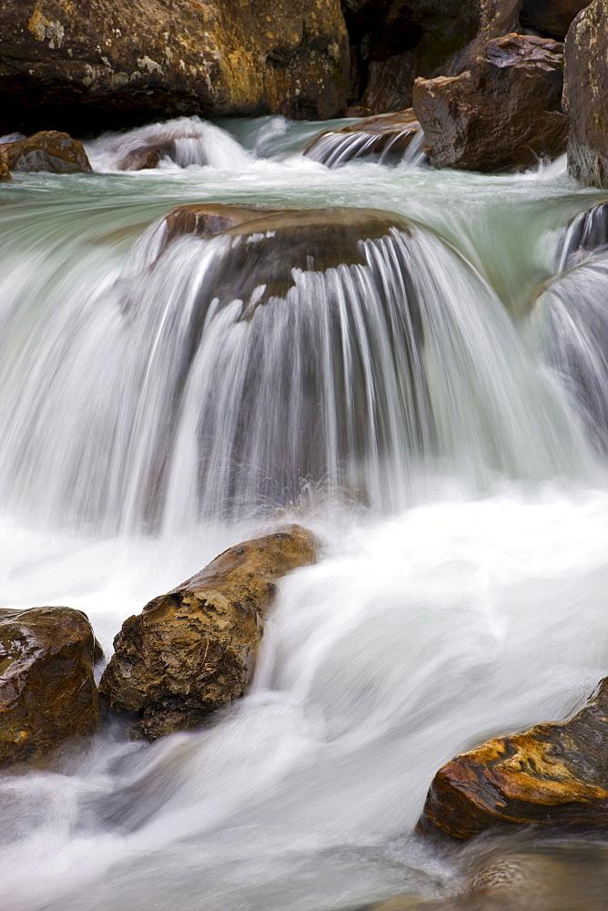 Detail, Sulzaubach brook, Stubaital Valley, North Tyrol, Austria, Europe