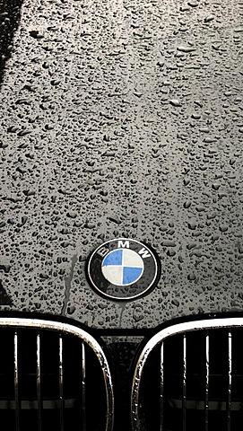 Rain drops on the paint of a car hood