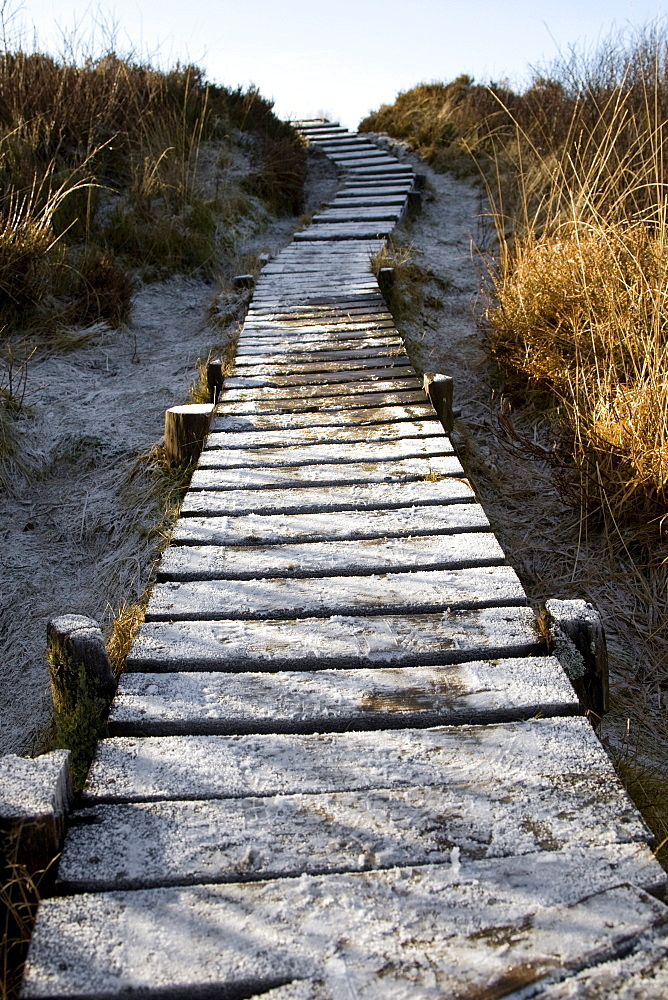 "Frozen boardwalk leading to the visitor information centre in wintertime, Hautes Fagnes (""High Fens"") uplands, Liege, Belgium, Europe"
