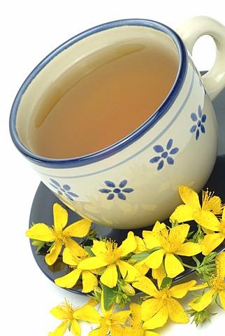 Saint John's Wort tea, herb tea, hypericum perforatum