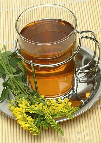 Tea made of Melilotus officinalis, Melilot