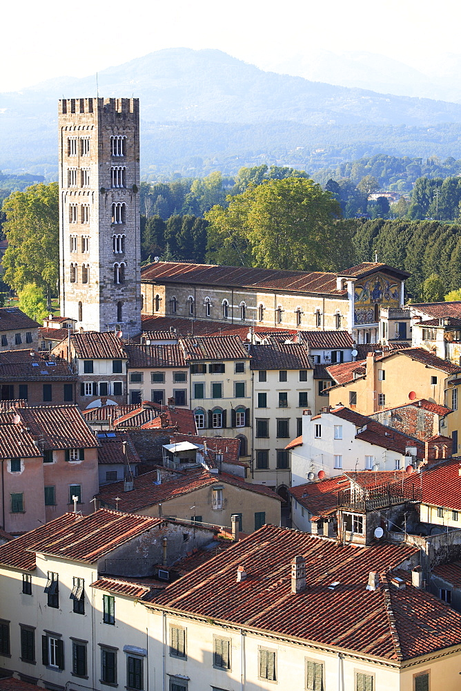 Campanile, San Frediano, Lucca, Tuscany, Italy
