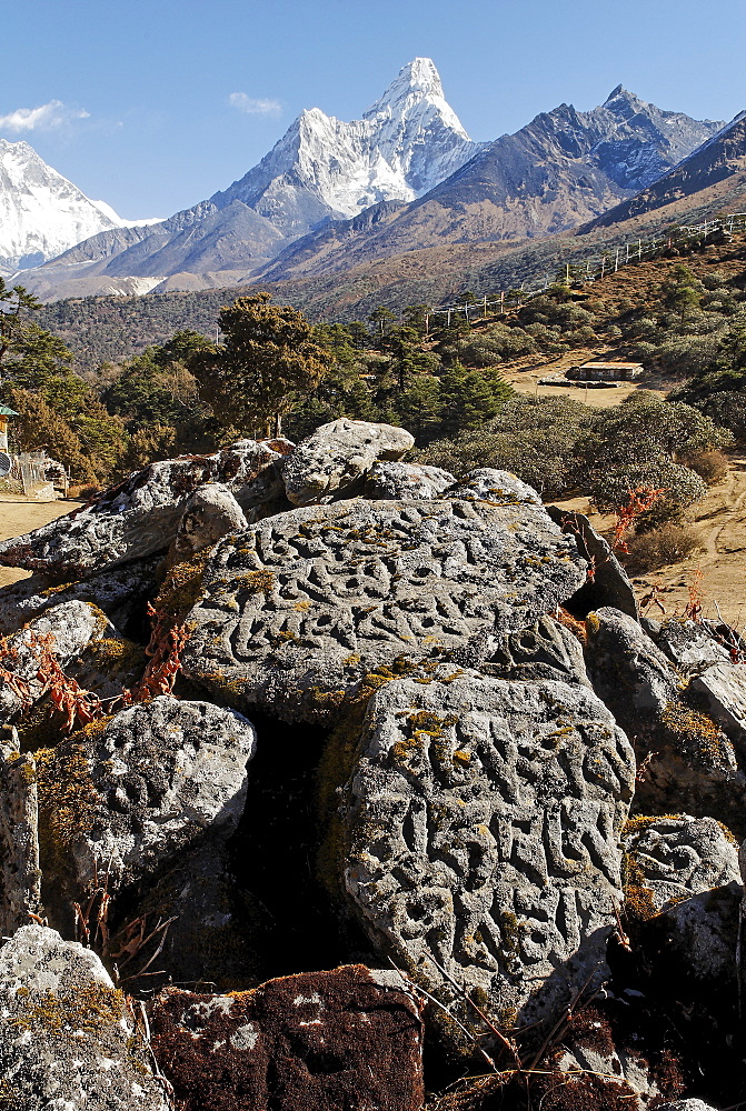 Mani stone at Tengpoche monastery in front of Ama Dablam (6856), Sagarmatha National Park, Khumbu, Nepal