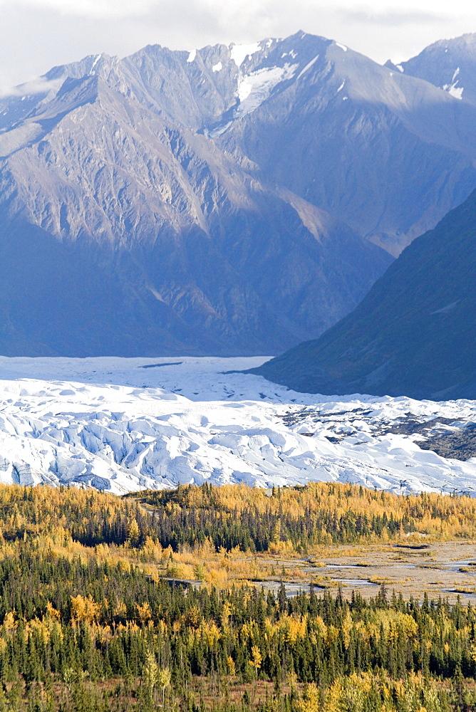 Matanuska Glacier, fall colors, Chugach Mountains, Alaska, USA