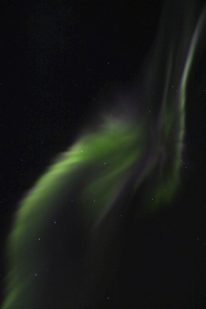 Northern Lights (Aurora Borealis), explosion of green light, Yukon Territory, Canada