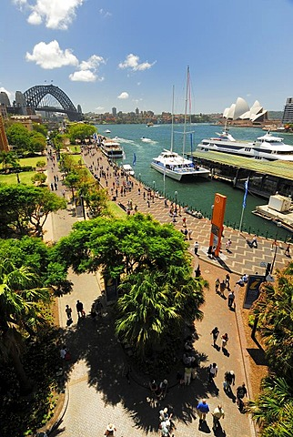 Harbour Bridge and the Sydney Opera House, Circular Quay, Sydney Cove, Sydney, New South Wales, Australia
