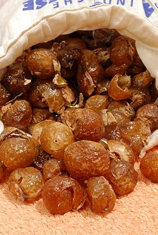 Soapnuts Sapindus Mukorossi - biological detergent