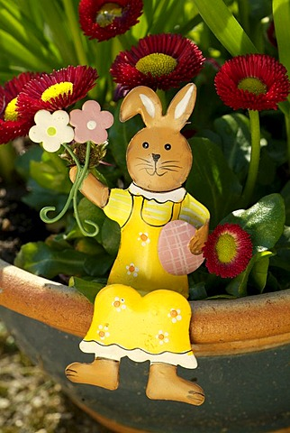 Decorative Easter bunny in a flower vase