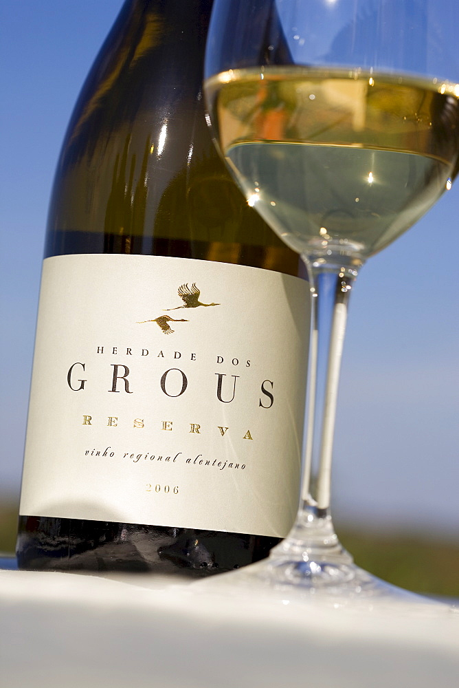 White wine from the winery Herdade dos Grous, Crane Manor, Alentejo Region, Portugal, Europe