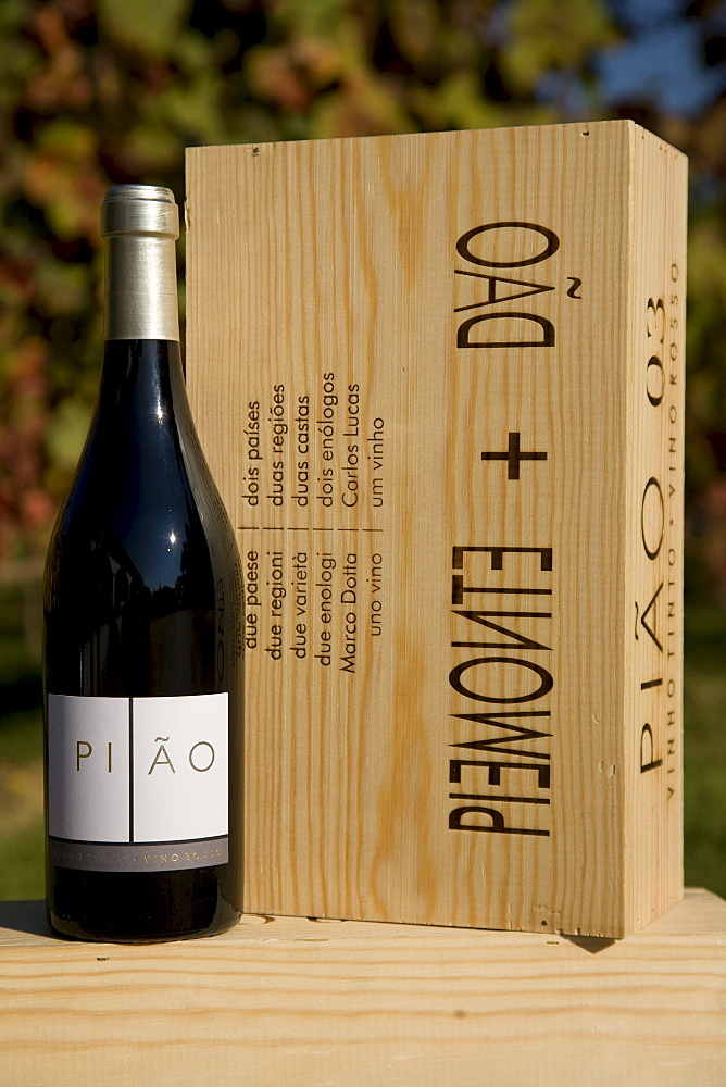 Piao, a red wine blend from Dao and Piemonte, wine from the Dao Sul company, oenologist Carlos Lucas, Carregal do Sal, Dao, Portugal, Europe