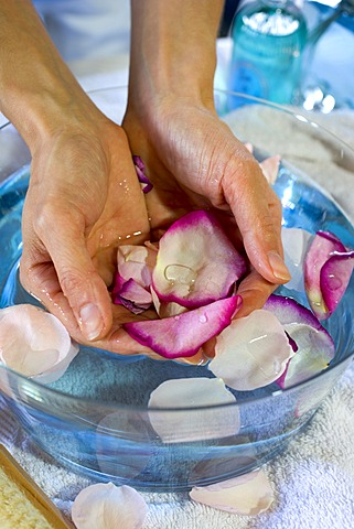 Hands, blossoms, rose petals, bath