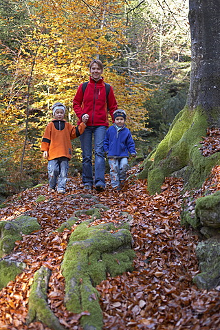 Woman and two children walking through autumnal forest, Carinthia, Austria
