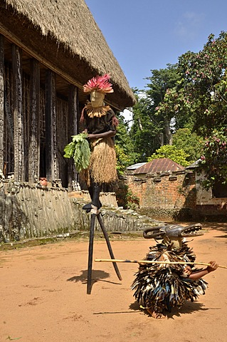 Traditional dance at the palace of Bafut, one of the traditional kingdoms of Cameroon, near Bamenda, north west Cameroon, Central Africa, Africa