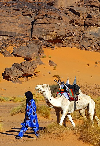 Tuareg with white Mehari riding dromedary, Acacus Mountains, Libya