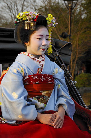 A Maiko, a trainee Geisha, sitting in a rickshaw, Kyoto, Japan, Asia