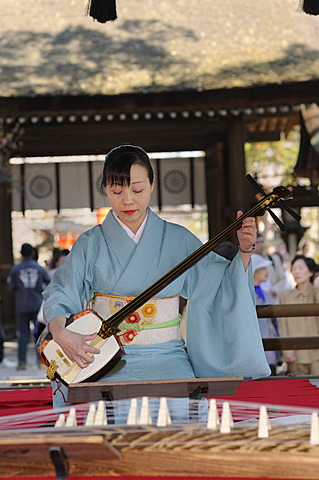 Woman playing a Shamisen, a Japanese three-stringed musical instrument, Kyoto, Japan, Asia