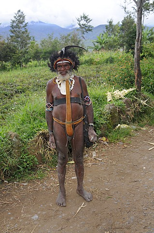 Dani, grandfather in traditional costume, Wamena, New Guinea, Indonesia, Southeast Asia