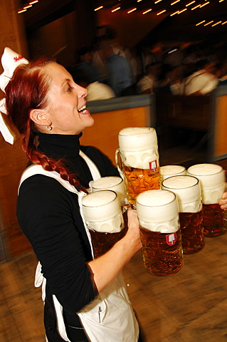 Waitress, Wies\'n, October fest, Munich, Bavaria, Germany, Europe - 832-371800