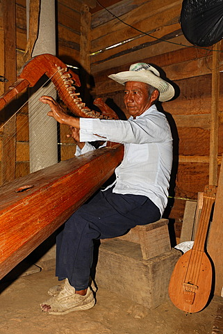 Native musician playing a self-made instrument, harp, wooden hut, Punta Gorda, Belize, Central America
