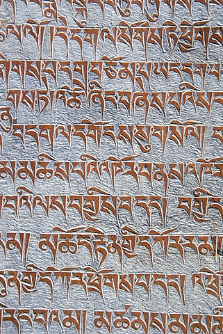 Tibetan Buddhist mantras carved in stone, Tongde Monastery, Zanskar Valley, Zanskar, Ladakh, Jammu and Kashmir, Indian Himalayas, North India, India, Asia