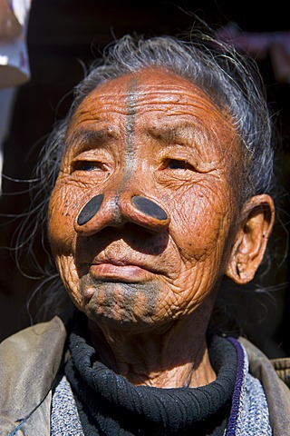 Old woman from the Apatani tribe, known for the pieces of wood in their nose to make them ugly, Ziro, Arunachal Pradesh, northeast India, India, Asia - 832-373014