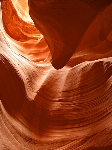 """The Tongue"" rock formation, red sandstone of the Moenkopi Formation, rock formation, colours and structures at Secret Slot Canyon, Page, Navajo Nation Reservation, Arizona, Southwestern USA, USA"