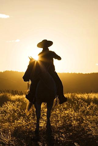 Cowboy horseriding at sunset, Oregon, USA