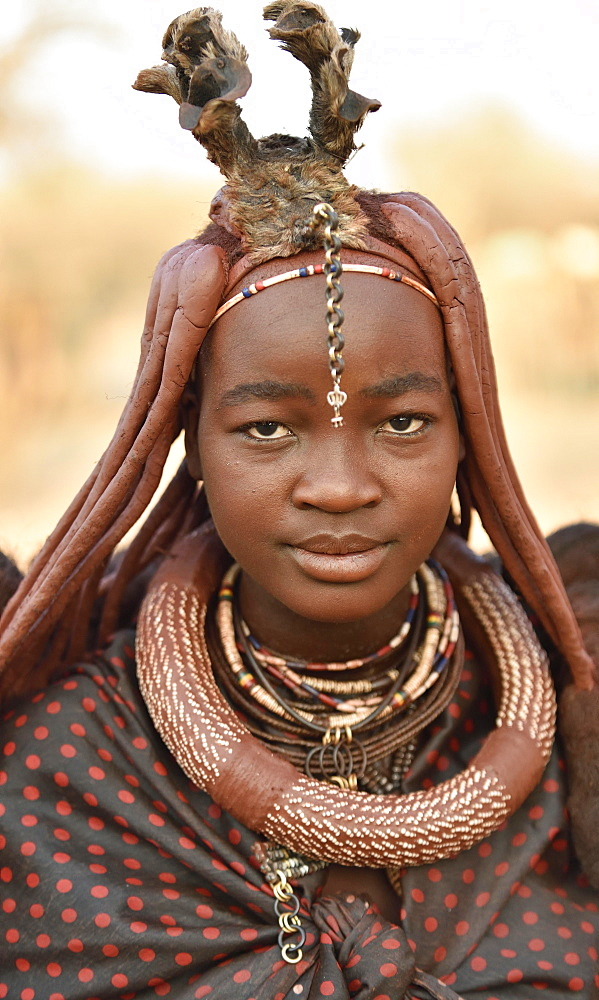 Portrait of a young, married woman with headdress and necklace, Kaokoveld, Namibia, Africa