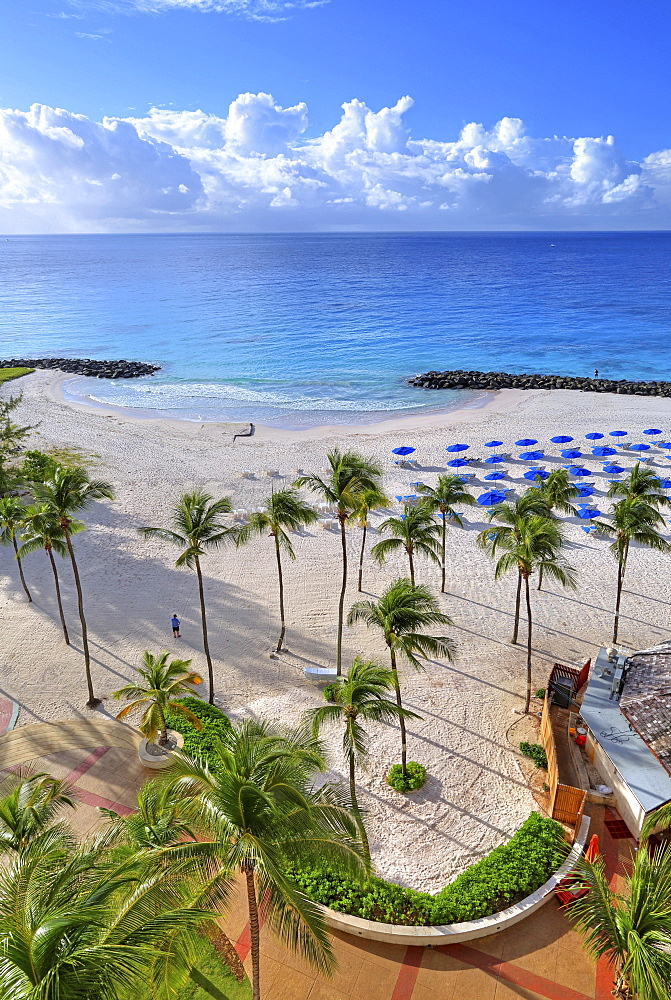Sandy beach with palm trees, Needhams Point Beach of the Hilton Hotel, Brigdetown, Barbados, Caribbean, Lesser Antilles, West Indies, Central America