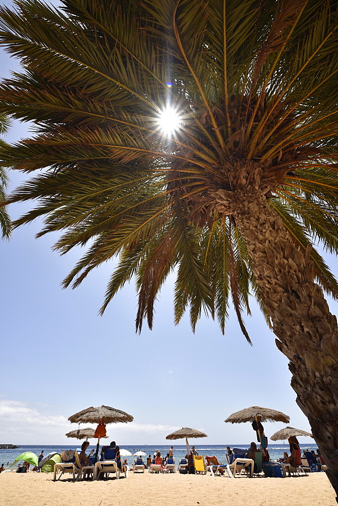 Vacationers, sun rays through palm tree on the beach, Playa de las Teresitas, San Andres, Tenerife, Canary Islands, Spain, Europe