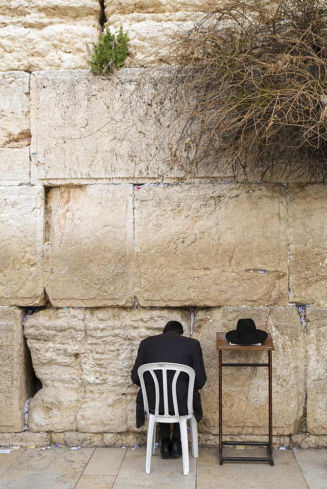 Ultra-orthodox Jew praying at the Western Wall, Wailing Wall, rear view, Jerusalem, Israel, Asia