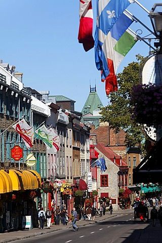 Rue Saint Louis, Quebec City, UNESCO World Heritage Site, Quebec, Canada