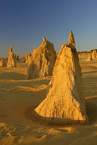 Pinnacles near Cervantes north of Perth, Nambung National Park, Western Australia, Australia