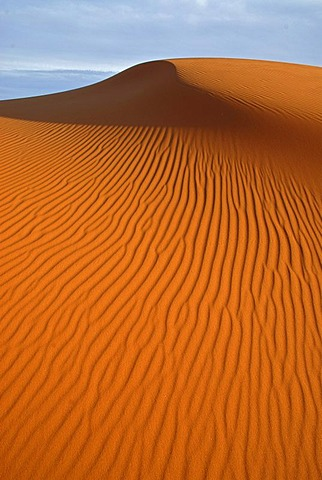 The sand dunes of Erg Chebbi at the western edge of the Sahara desert, Meknes-Tafilalet, Morocco, Africa