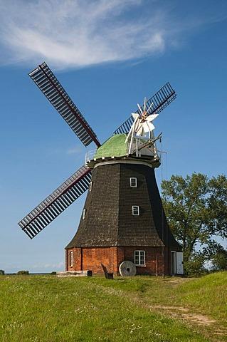 Stove Dutch windmill, built 1889, Boiensdorf, Baltic Sea, Mecklenburg-Western Pomerania, Germany, Europe