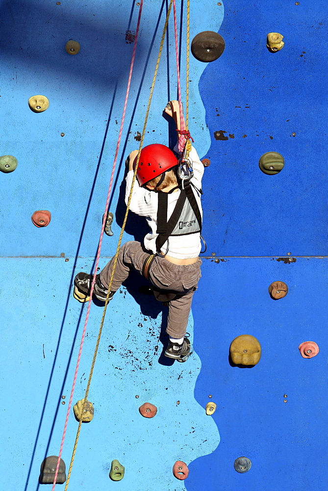 Child climbing on a climbing wall, secured with rope, Essen, Germany, Europe