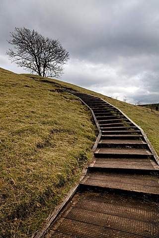 Wooden steps giving easy access to the top of St Catherine's Hill, Winchester, England, United Kingdom, Europe