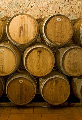 Wine aging in oak barrels in wine cellar in Chianti, Toscana, Tuscany, Italy, Europe