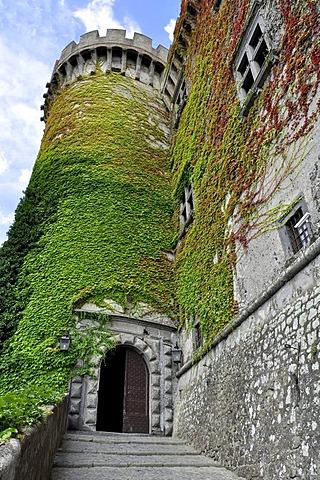 Castello Odescalchi, fortress, portal, bastion covered in ivy (Hedera helix), Bracciano, Lazio, Italy, Europe