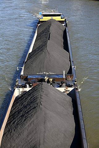 Bulk carriers, coal cargo on a cargo ship, barge, on the Rhine near Duesseldorf, Rhineland, North Rhine-Westphalia, Germany, Europe