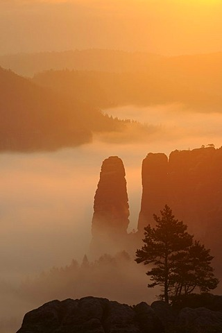 Blossstock rock in fog, Elbe Sandstone Mountains, Saxony, Germany, Europe