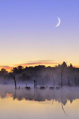 Moon above the Schwenninger Moos nature reserve, composite photograph, source of the Neckar River, Villingen-Schwenningen, Black Forest, Baden-Wuerttemberg, Germany, Europe