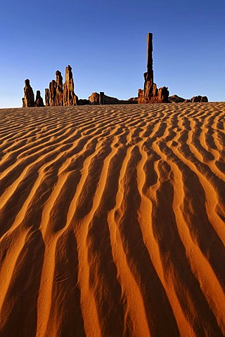 Sand dunes in front of the Totem Pole and Yei Bi Chei rock formations after sunrise, Monument Valley, Navajo Tribal Park, Navajo Nation Reservation, Arizona, Utah, United States of America, USA