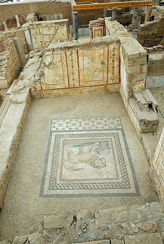 Mosaics, murals and frescoes in Terrace House 2 in Curetes Street, terraced houses, excavations, ruins of Ephesus, Efes, UNESCO World Heritage Site, Selcuk, Lycia, Southwest Turkey, West Coast, Western Turkey, Asia Minor