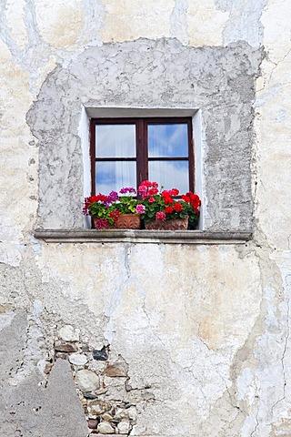 Window in Prissian, Tisens, Alto Adige, Italy, Europe