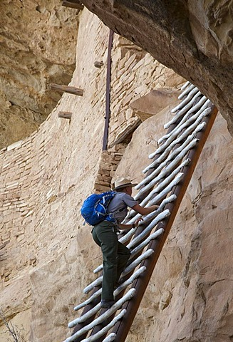 A park ranger climbs a ladder to enter the Balcony House cliff dwelling at Mesa Verde National Park, featuring cliff dwellings of ancestral Puebloans that are nearly a thousand years old, Cortez, Colorado, USA