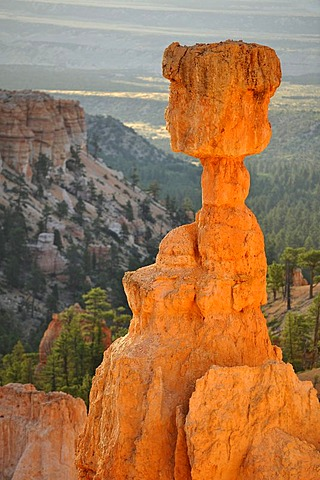 Thor's Hammer rock formation at sunrise, Sunset Point, Bryce Canyon National Park, Utah, United States of America, USA