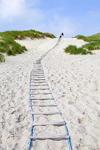 Pathway to the beach, Amrum Island, North Friesland, Schleswig-Holstein, Germany, Europe, PublicGround