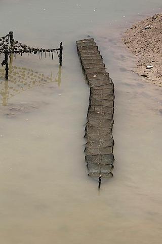 Fish farming in Xiamen Bay, Fujian Province, China, Asia