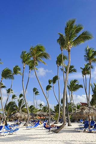 Beach of Punta Cana, Dominican Republic, Caribbean